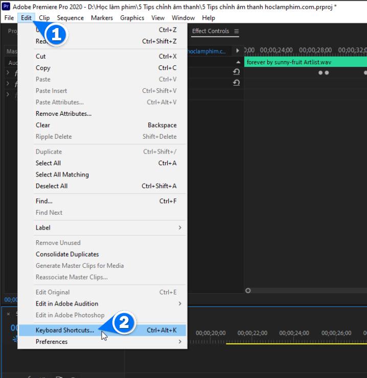 5 mẹo chỉnh âm thanh đơn giản trong Premiere Pro 62